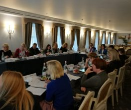3rd JMC Meeting in St. Petersburg: harvesting first results and setting plans for coming year
